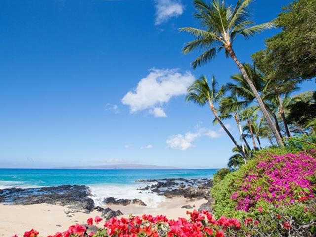 おひとりさま旅行先として人気のハワイ