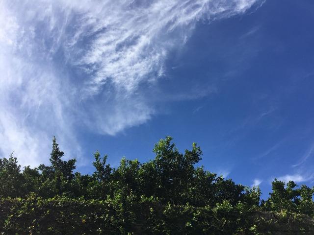 沖縄・那覇の夏の青空