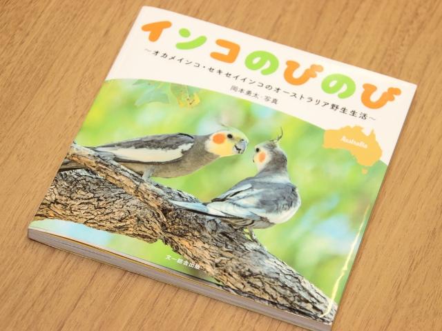 岡本さんの写真集『インコのびのび』