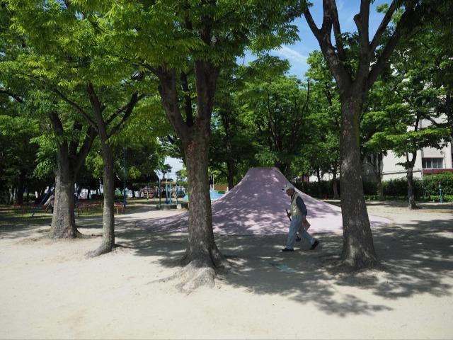 「中村公園」の木立にひっそりとある富士山すべり台。遠目にも左右非対称。牛田さんはこのアンバランスさに高度成長期の勢いを感じるという。