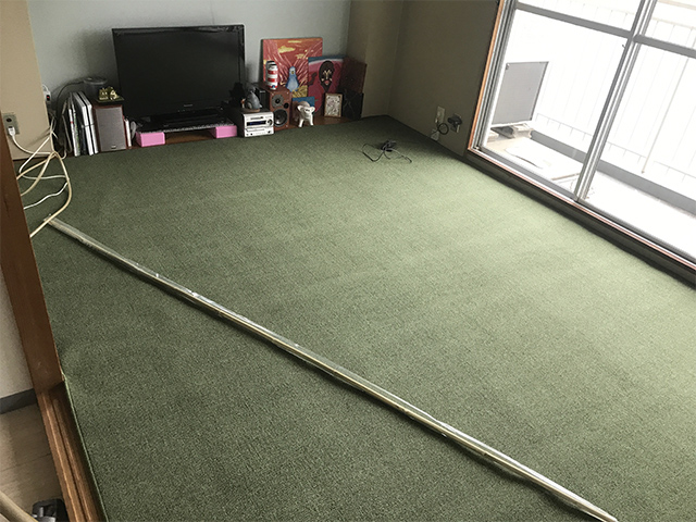 ひざが悪い猫のために、畳の上に絨毯を敷いた