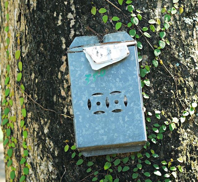 香港の郵便受け(木にかけられている)