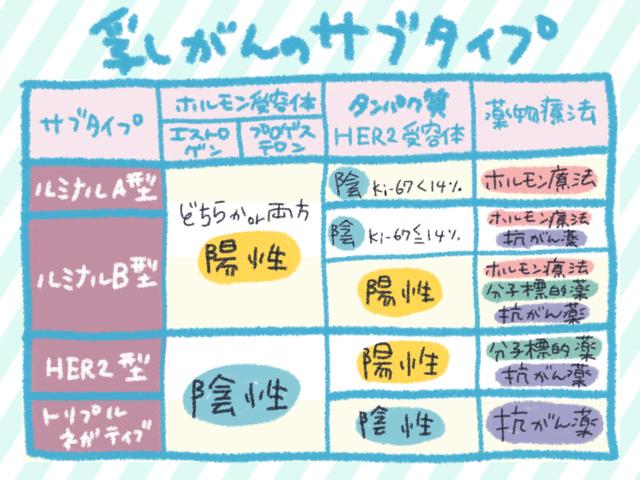 乳がんのサブタイプ。日本人の乳がん患者の60%はルミナルA型とのこと(出典:『名医が語る最新・最良の治療 乳がん』法研)