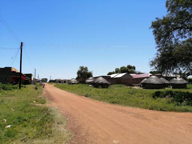 筆者が活動するウガンダ北東部の様子