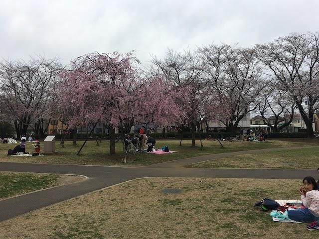 石川浩司の「地味町ひとり散歩」12回「上福岡」 写真#14