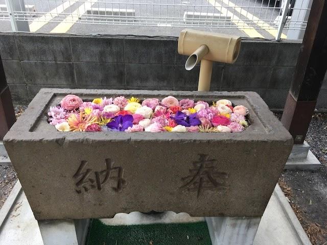石川浩司の「地味町ひとり散歩」12回「上福岡」 写真#22